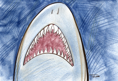 A cartoon shark mouth leading up